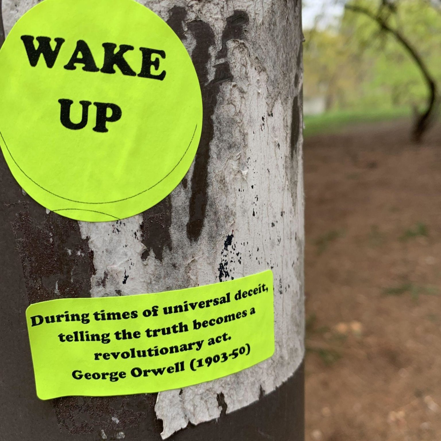 picture of two green stickers on a tree saying 'wake up' and 'during times of universal deceit, telling the truth becomes a revolutionary act - George Orwell (1903-50)'